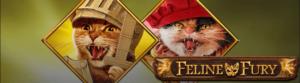 Play'n GO Feline Fury