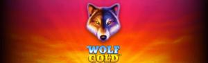Kolikkopelejä laidasta laitaan - Wolf Gold